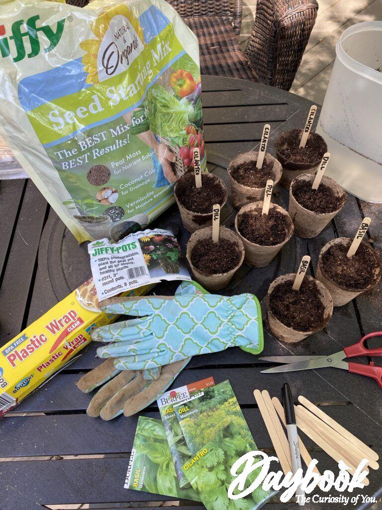 Burpee Seeds and Jiffy Pots