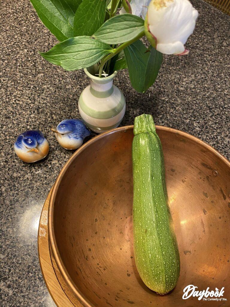 one zucchini in a copper bowl