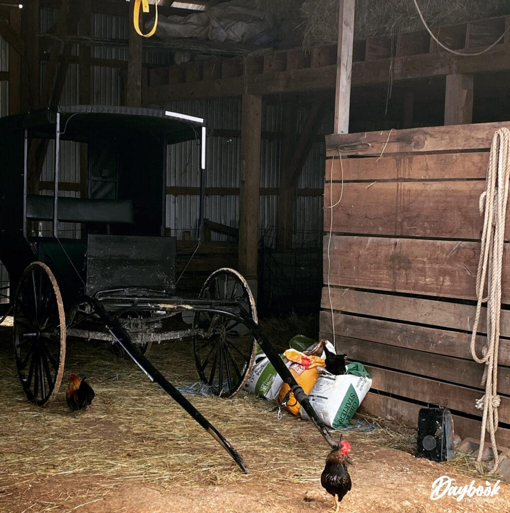 Amish buggy in a barn